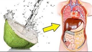 Das passiert wenn du täglich Kokoswasser trinkst