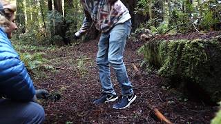 Recording Footsteps in a Forest with some LOM Usi Pro's near Redwoods National Park in California