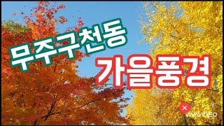 무주구천동, 무주구천동어사길, 가을풍경,  autumn…