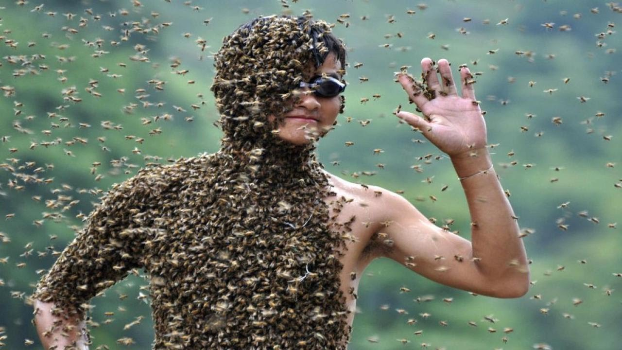 Most Bee Sting: Breaking The World Records - YouTube