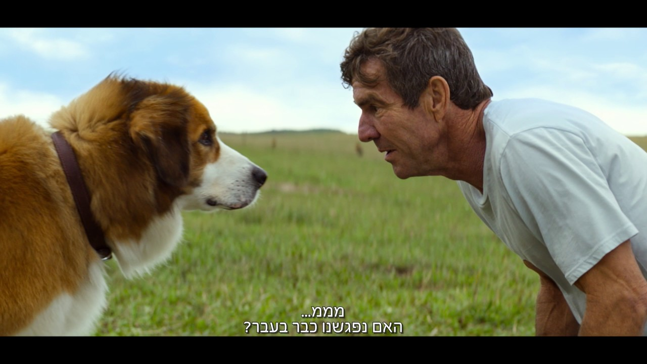 Dog S Purpose Movie Length