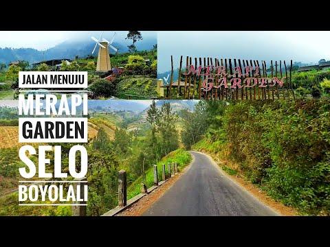 wisata-merapi-garden-|-selo-|-boyolali-|-dengan-latar-belakang-gunung-merapi
