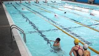 新店國小102學年5年級游泳比賽501班