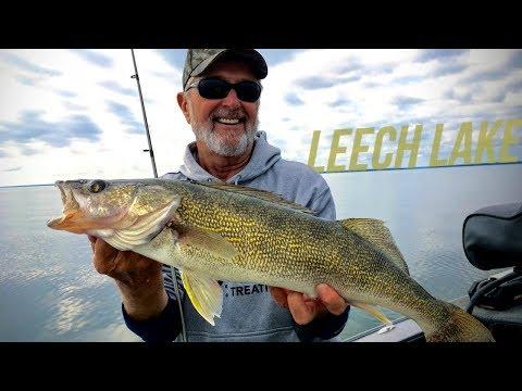 Leech Lake Walleye Fishing – Angling Edge TV