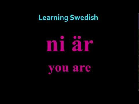 "Learning Swedish (Lesson 4) ""To Be And To Have"""