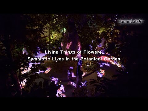 Living Things of Flowers, Symbiotic Lives in the Botanical Garden