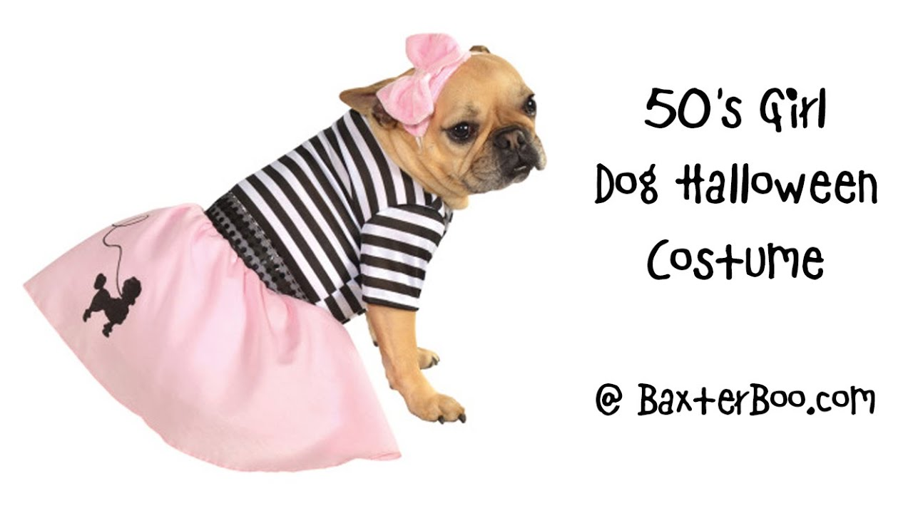 50s girl dog halloween costume
