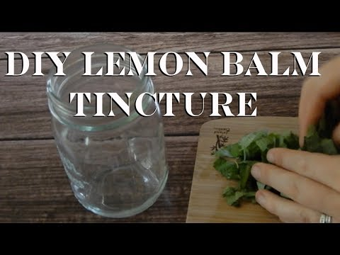 How To Make Lemon Balm Tincture + 3 Culinary Uses