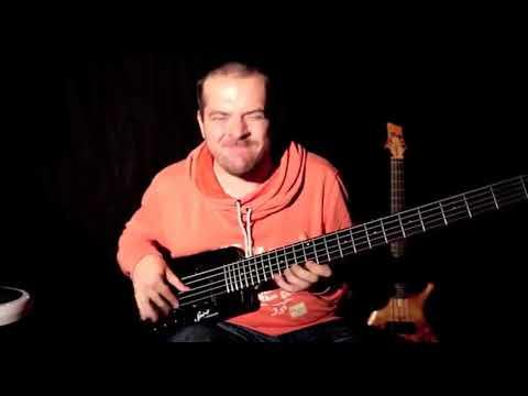 Highlights Of The Steinberger Spirit Cricket Bat Bass