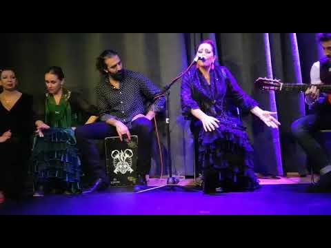 flamenco en zurich Puchero y thais