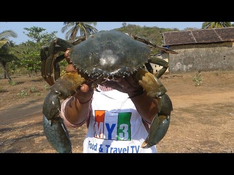 WORLD'S BIGGEST CRAB | MAKING GRILLED CRAB | FOOD FACTORY street food