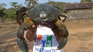 WORLD'S BIGGEST CRAB | MAKING GRILLED CRAB | FOOD FACTORY