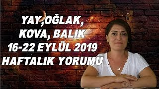 yay-olak-kova-balik-16-22-eyll-2019-haftalik-yorumu-astrolog-nuray-taiyan-yorumladi