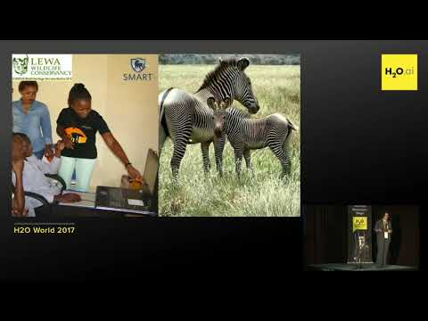 Crowdsourcing, computer vision, and data science for conservation - Tanya Berger-Wolf, IBEIS.org