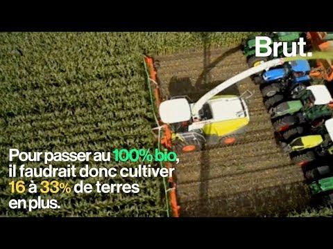 Nourrir la planète avec une agriculture 100% bio en 2050, c'est possible ?