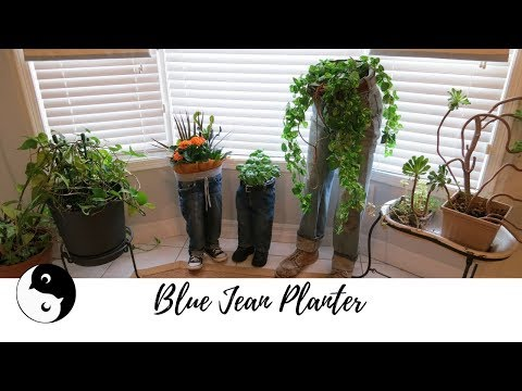 Blue Jean Planter   Birdz of a Feather ~ Craft Rehab