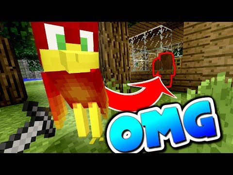 THE COMPLETE KNOCKOUT !!! Minecraft Murder Mystery
