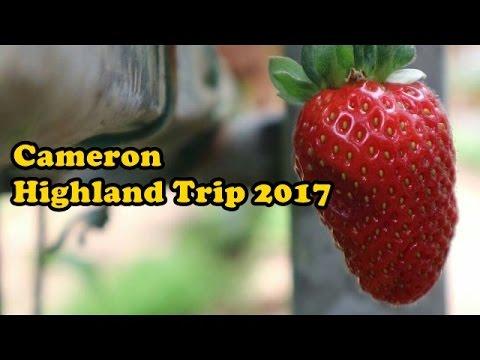 Cameron Highlands Trip 2017 #yi4k w gimbal