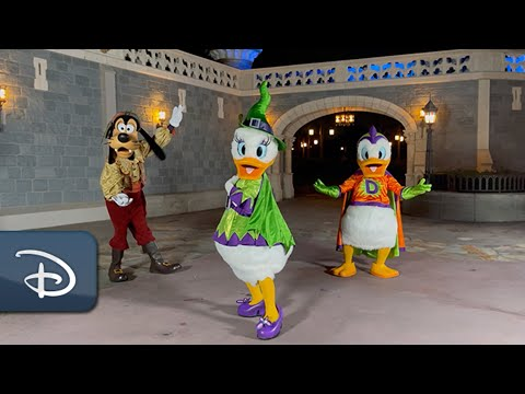 New Halloween-Themed Party 'Disney After Hours BOO BASH' Coming to Magic Kingdom   Walt Disney World