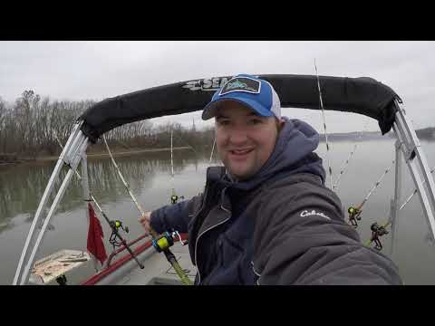 Catching Winter Time Blue Catfish (tips And Tricks)