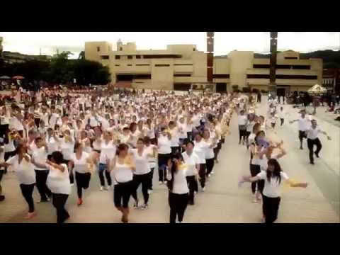 Día Mundial de la Actividad Física - Pasto Deportes