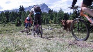 Crossing the Alps - Tirol Mountain Bike Safari