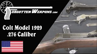 Colt Model 1929 Prototype .276 Rifle, by Ed Browning