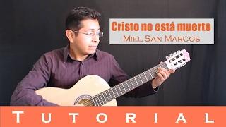Cristo no está muerto - Versión Miel San Marcos (Tutorial guitarra)