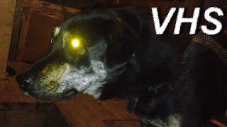 Терминатор: Очень темная судьба - Трейлер фильма - VHSник