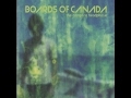 Boards Of Canada Geogaddi
