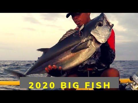 2020 Big Fish | Dogtooth Tuna Caught In Jigging