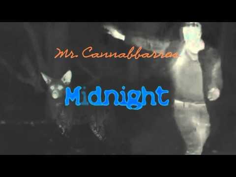 Mr.Cannabbarros - Midnight (Coldplay Cover)