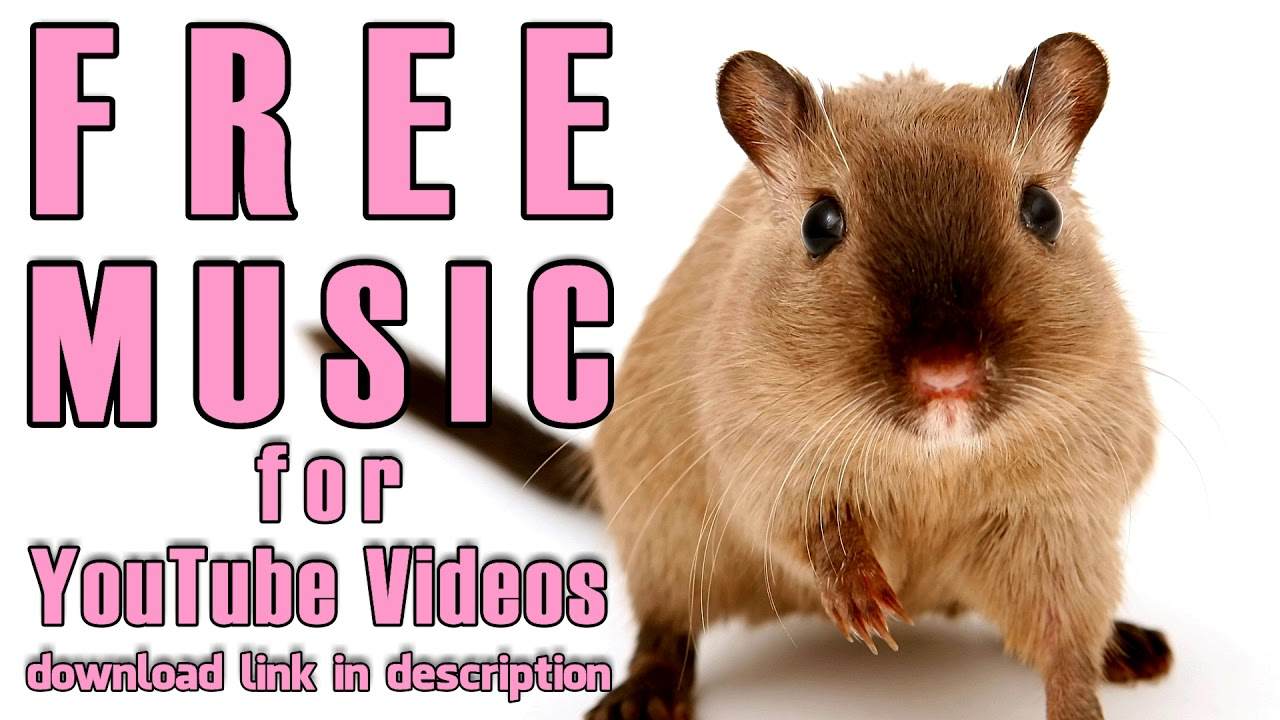 Uncategorized Hamster Free Vids free music for youtube hamster march kevin macleod macleod