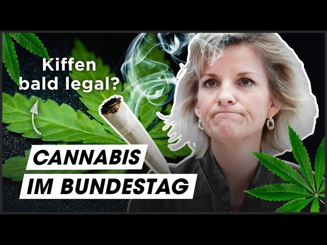 Cannabis: Der große Parteien-Check!