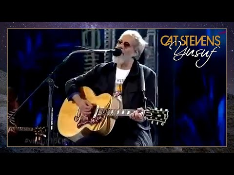 Yusuf  Cat Stevens  Father and Son Viña Del Mar festival, Chile 2015