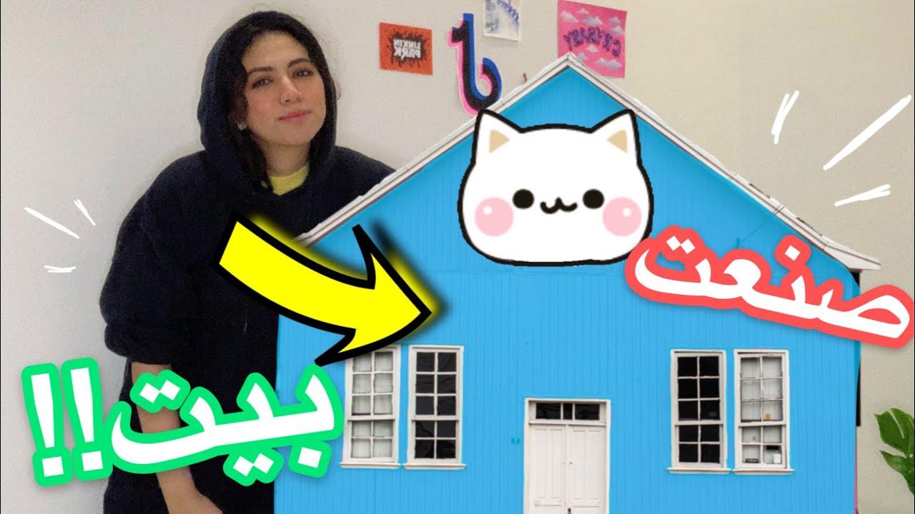 صنعت بيت جميل لقطط الشارع 😍😍 جربناها النتيجة !!!! 😱