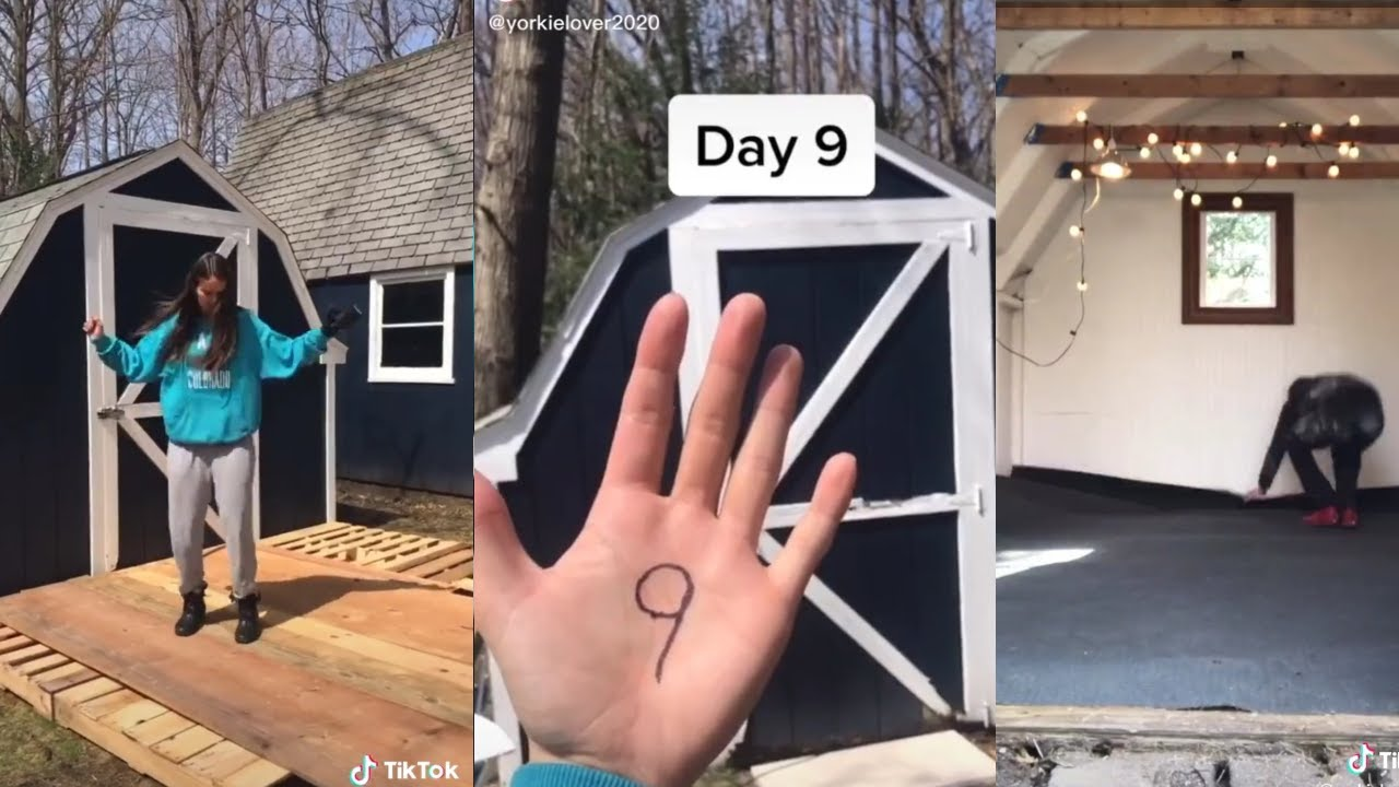 TikTok series 2020.{ Day ~ of turning a barn into shed ...