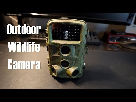 Trail Outdoor Wildlife Camera