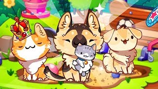 THE EXCLUSIVE DOG PARK SET  | CAT GAME COLLECTOR 2019