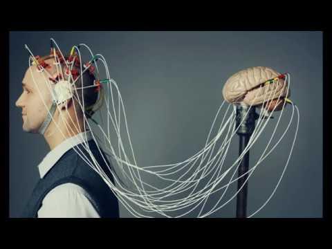 Electrical Human Brain