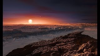 Standing on Proxima b - Closest Exoplanet to the Earth