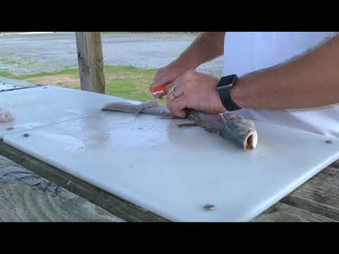 How to Clean Speckled Trout FAST - Dexter Outdoors