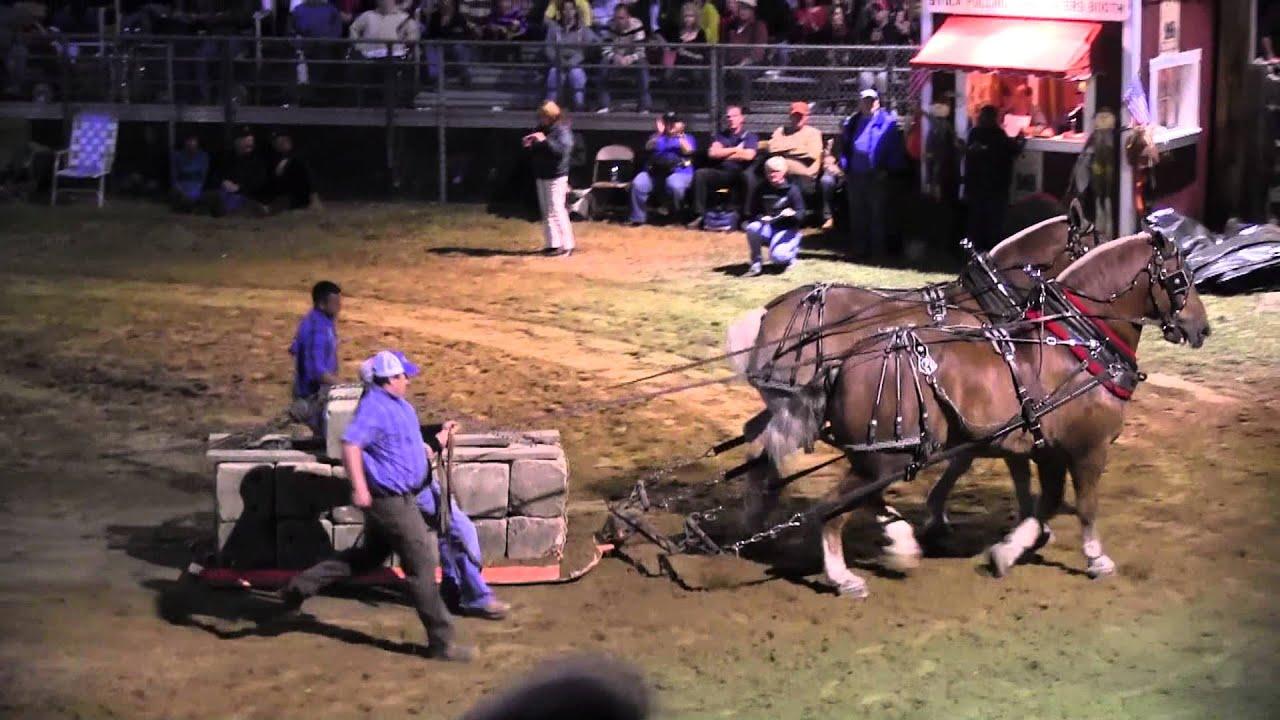Download Draft Horse Pull 2013 Deerfield Fair NH Pulling Video 33