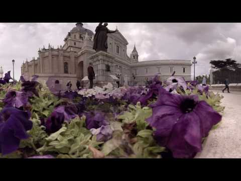 360 video: Flowers in front of Almudena Cathedral, Madrid, Spain