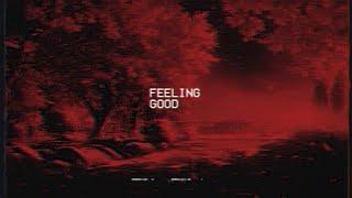 feeling good ~ michael buble ( tiktok version )