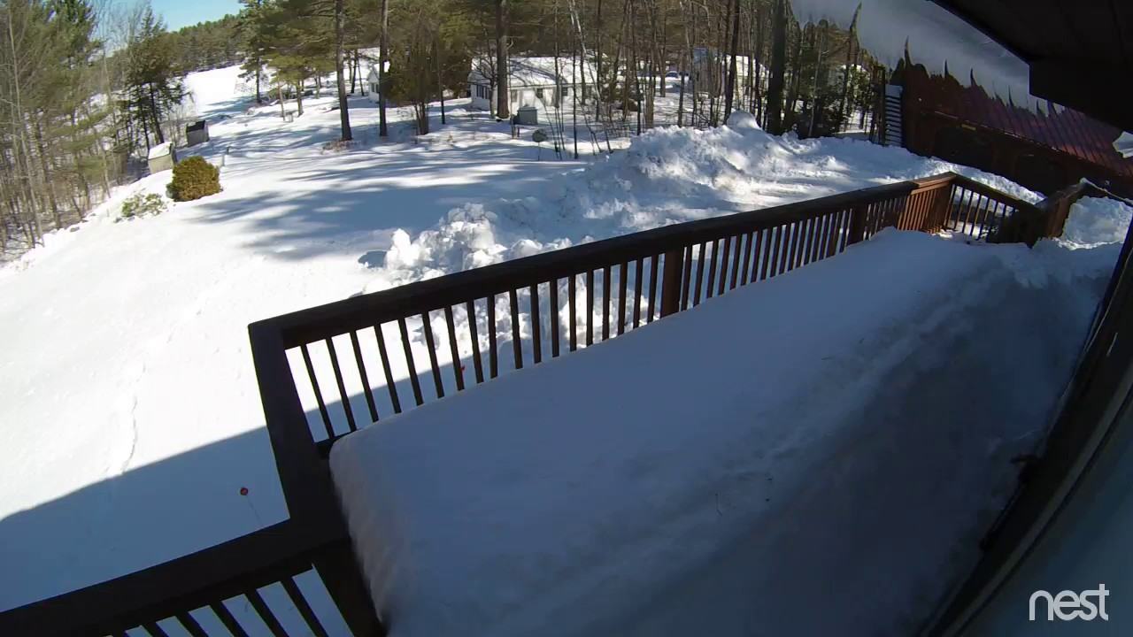 Nest Camera Captures Massive Load Of Snow Falling From