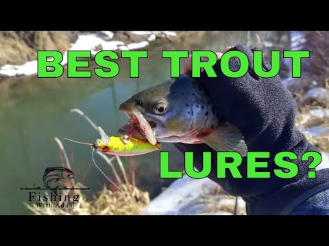 The BEST 2 TROUT LURES | Snake River | BROWN TROUT