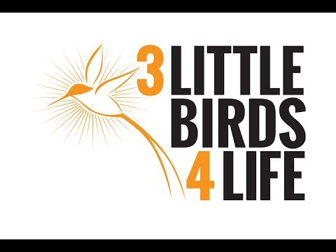 City Corner - 3 Little Birds 4 Life