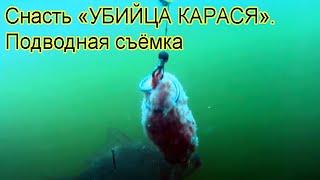 Ловил на донку с кормушкой. Подводная съемка, рыбалка. Ловля карася. Fishing