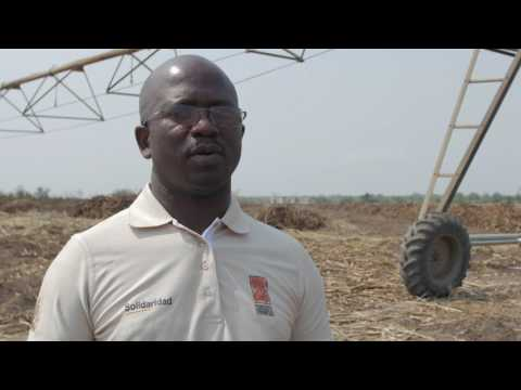 Sweet Success - Supporting sugar growers in Malawi